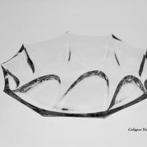 Calypso tanier_93K69_189